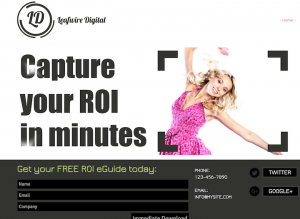 Landing page built in 10 minutes on Wix