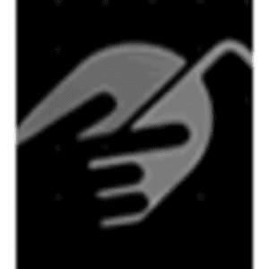 ms-icon-310x310